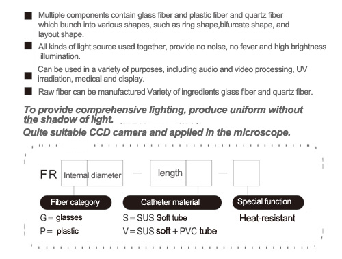 Ring-shaped light source Fiber feature